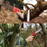 曲げられた刃の木製のハンドルのツリーブランチの切り取る切断は見た
