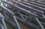 Solo edificio de acero de la construcción del palmo grande para el taller
