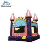 Aufblasbares springendes Schloss, aufblasbares federnd, Schlag-Haus