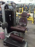 Ginásio/Design Profissional Sentado Leg Curl Tz-6001