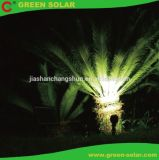Conjunto de luz solar del punto de 2 lámparas con la luz Egg-Shaped, solar del LED