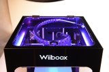 Принтер 3D Fdm автоматической печатной машины цены выравнивая самое лучшее Desktop