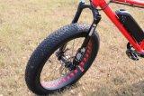 完全な中断脂肪質のタイヤの電気自転車のバイク1000W 1500W