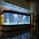 Folha de acrílico com espessura de grandes dimensões para o tanque de peixes de aquário