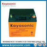 batterie profonde de la batterie AGM de cycle de 12V 45ah avec la garantie de 3 ans