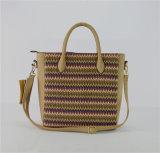 Saco de Tote amigável do saco de ombro das bolsas do saco da praia da palha do verão de Eco (ZXK1873)