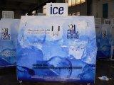 De Bak van de Diepvriezer van de Opslag van het ijs (gelijkstroom-600)