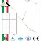 Nueva baldosa cerámica del azulejo de suelo de Italia de la llegada con la superficie nana (X6PT01T)