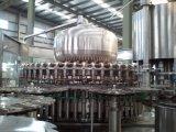 Máquina de rellenar del jugo del pepino de 50 pistas en botellas del animal doméstico