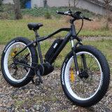 산 여행을%s 250W 8 재미 모터 전기 자전거