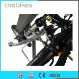 12 pouces dans le moteur Handcycle électrique de pivot de la roue 36V 350W
