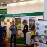 Paysage Forestgrass Gazon artificiel sur Canton sur le commerce équitable