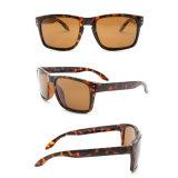 Gafas de sol de encargo del ojo de gato de la insignia del mejor diseño de Holbrook 2017 mujeres