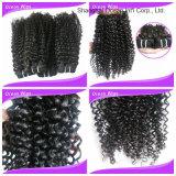 Extensiones el 100% indias rizadas rizadas del pelo humano del Afro de la fabricación de China