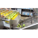 Cadena de producción de la legumbre de fruta de la automatización/arandela y secador de sequía de la fruta que se lavan
