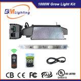 1000W CMH는 1000W/860/630W CMH 전구를 위한 가벼운 장비를 증가한다