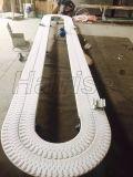 Hairise Flexible sistema transportador de cadena para la industria de bebidas
