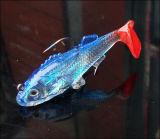 richiamo morbido del cavo di 15g 8.5cm dell'esca Bionic dei pesci
