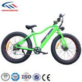 2017 4.0inch脂肪質のタイヤが付いている新しい脂肪質の電気バイクの自転車Lmtdf-35L