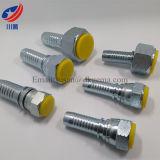 26711 montaggio femminile diritto di Jic del montaggio di tubo flessibile montaggio di tubo idraulico del cono da 74 gradi