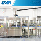 Automatischer funkelnder Getränk-Flaschen-Wasser-füllender Produktionszweig Maschine
