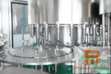 L'acqua minerale di plastica della bottiglia di vetro dell'animale domestico automatico/spremuta calda/delicatamente ha carbonatato l'imbottigliatrice di riempimento della bevanda del CO2 di CDD/della bevanda energia della bevanda