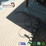 O projeto europeu recicl o revestimento oco ao ar livre da madeira WPC da grão de madeira