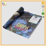 Impresión barata del libro de niños (OEM-GL002)