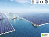Pesca e comitato solare applicato 265W di PV di tecnologia complementare di PV