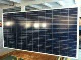 el panel polivinílico de la energía solar de 300W picovoltio con Ce. del TUV