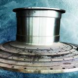 製造所のヘッド大きい鋼鉄鋳造