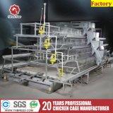 Kratten van de Kip van de Machines van het Landbouwbedrijf van de Kip van de Laag van de Leverancier van China de Goedkope