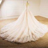 Vestido nupcial de vestido da princesa casamento da flor de Champagne Tulle