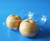 Bandeja plástica disponible respetuosa del medio ambiente del alimento para la fruta