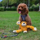 공장 공급 견면 벨벳에 의하여 채워지는 Monky 애완 동물 장난감