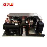 niedrige Temperatur 15HP Bitzer Kompressor-kondensierendes Gerät
