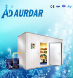 Lager-Kaltlagerungs-Raum-/Freezer-Raum