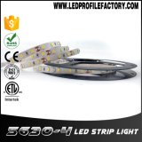 Tira de Cara Pasang Lampu 5050 RGBW LED 4.8 vatios por el contador