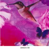 Hummingbird Butterfly Hydrographic Water Film Transfer for Knows them Item Not. A049jx172b