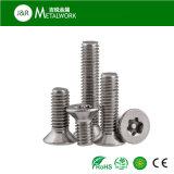 Зенкованный нержавеющей сталью винт головной крышки (DIN7991)