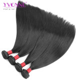 Venda por grosso de produtos naturais do cabelo brasileiro directamente 100 de cabelo humano