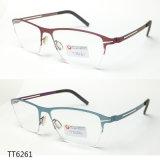 Trendy en Elegante Optische Frame van het Titanium van de Manier (TT 6261)