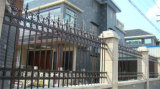 Clôture résidentielle décorative classique personnalisée de premier niveau