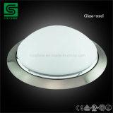 De moderne BinnenOppervlakte zette het LEIDENE Licht van het Plafond met de Dekking van het Glas op