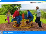 2019 Apparatuur van de Speelplaats van de Jonge geitjes van het vermaak de Openlucht
