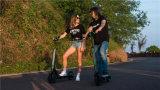 APPの大人のための電気スクーターを折る2車輪36V