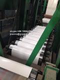PPGI는 Prepianted Glvanized 강철 코일 공장을 냉각 압연했다
