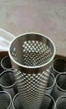 304 cajas modificadas para requisitos particulares perforadas metal/cartucho/cilindro/tubo del filtro del acero inoxidable