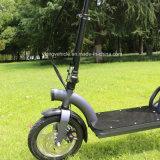 """"""" Motorino elettrico della batteria di Litnium della E-Bici i migliori 12 (1202)"""