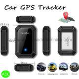 GPS van het voertuig Drijver met de Dubbele Plaats van de Wijze GPS+Lbs (A10)